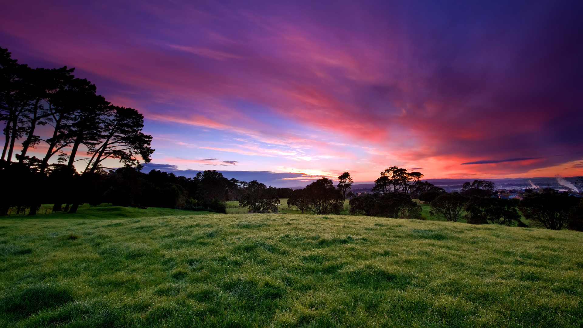 Image of a sunset over trees and a field
