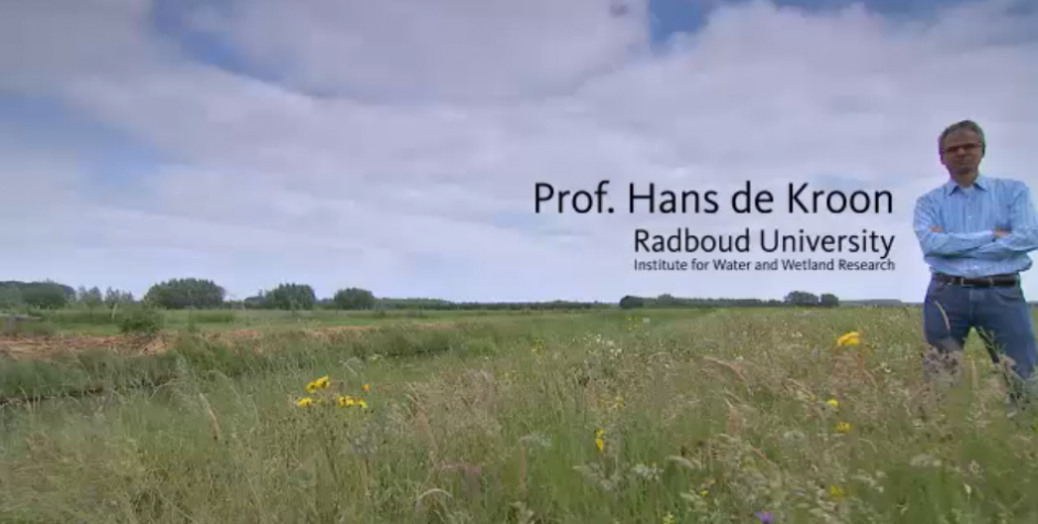 Image of Professor Hans de Kroon in a field