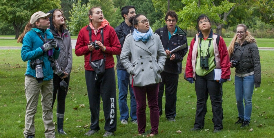 Participants in the birding walk got up with the sun to catch a glimpse of migrating birds at their most active time of the day. Many birds are never seen through the foliage, so expert birders rely on unique calls and even flight patterns to identify secretive birds.