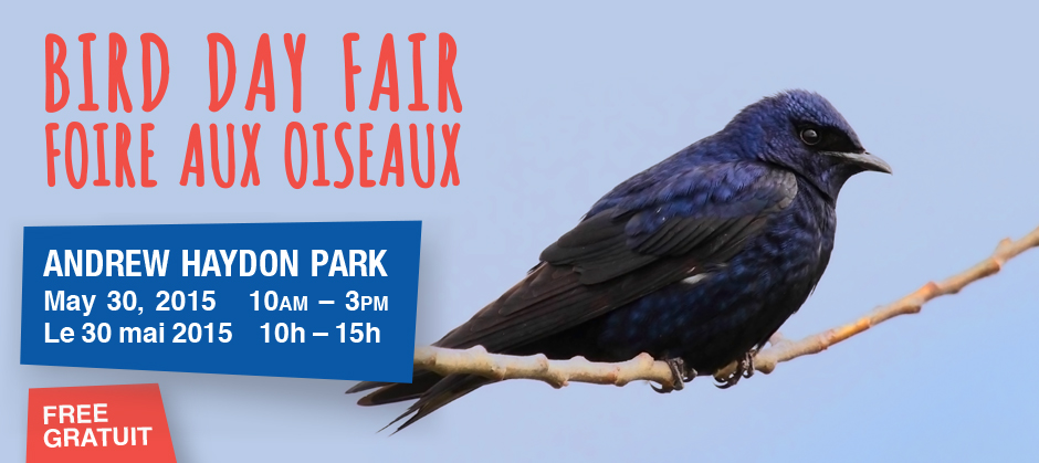 Come out to the Bird Day Fair May 2015