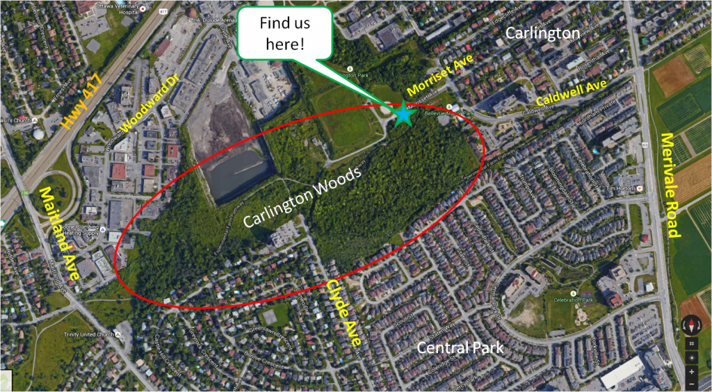 Map of Carlington Woods area, Ottawa, Ontario