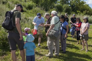 Group participating in a nature walk during the July 2015 NatureBlitz at Carlington Woods