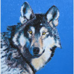 Eastern Gray Wolf painting