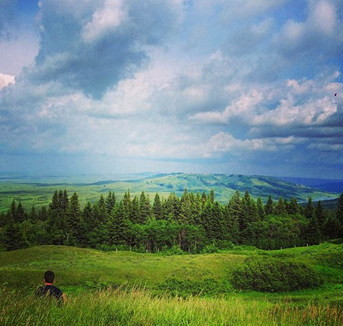 Image of the view from Cypress Hills