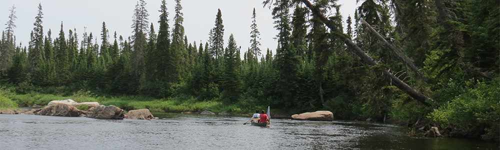 Image of the North French River