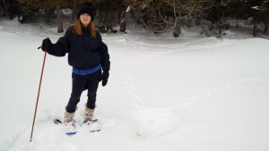 Image of snowshoeing