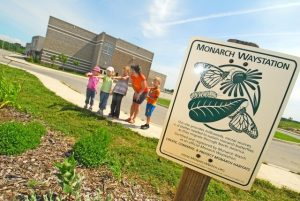 Image of Monarch Waystation