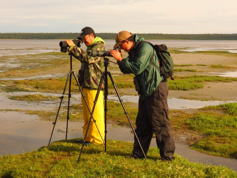 Image of bird watchers on Charlton Island