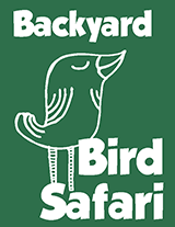 Image of Backyard Birds