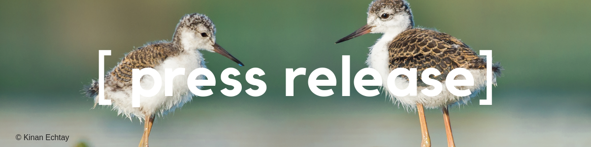 Press Release: Ottawa Bird Day