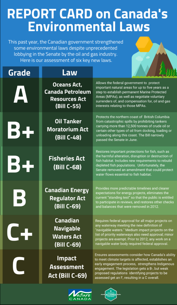environmental laws infographic