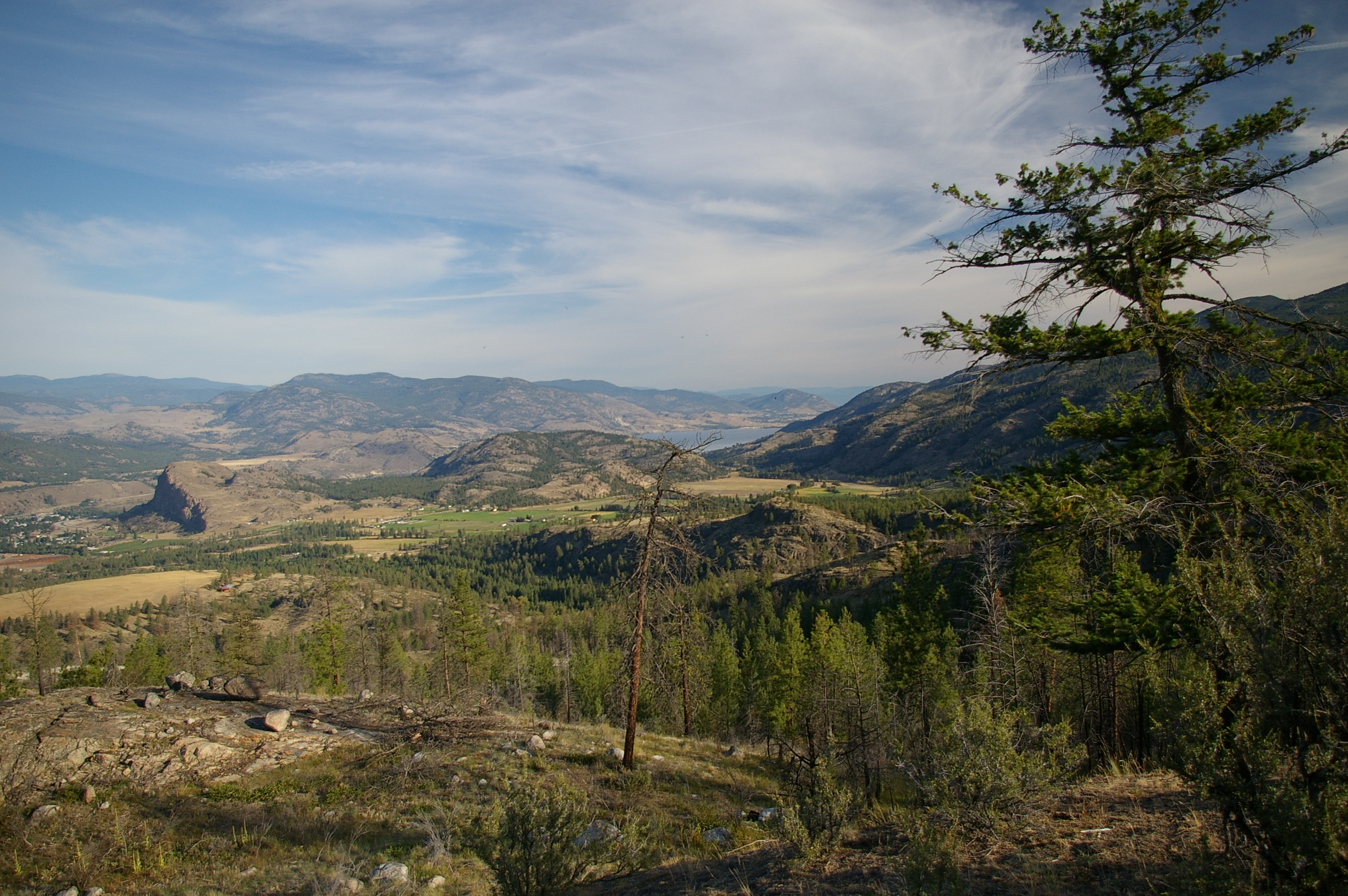 Nature Canada congratulates governments on new agreement for South Okanagan protection