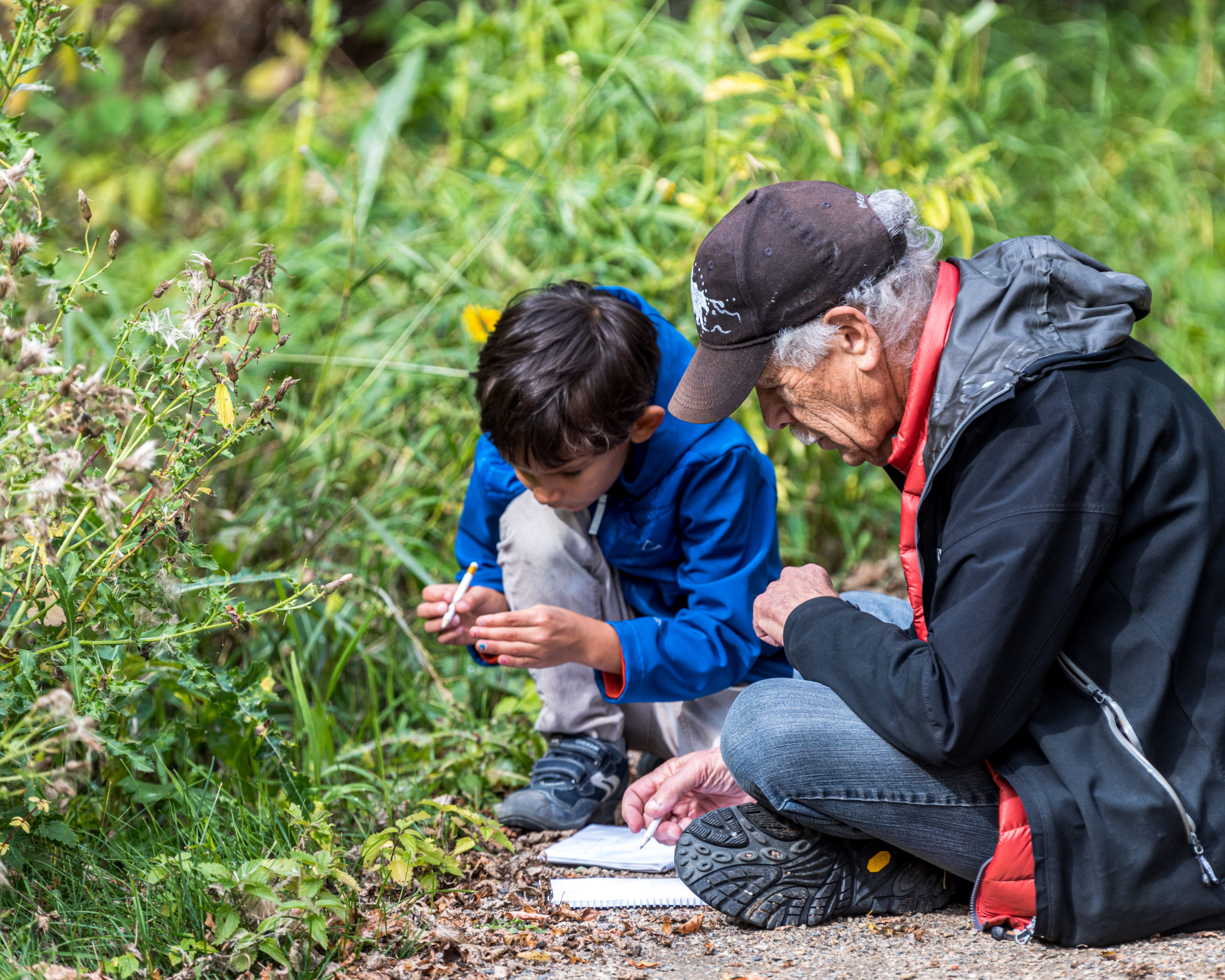 Image of a boy and an elderly man sketching nature together