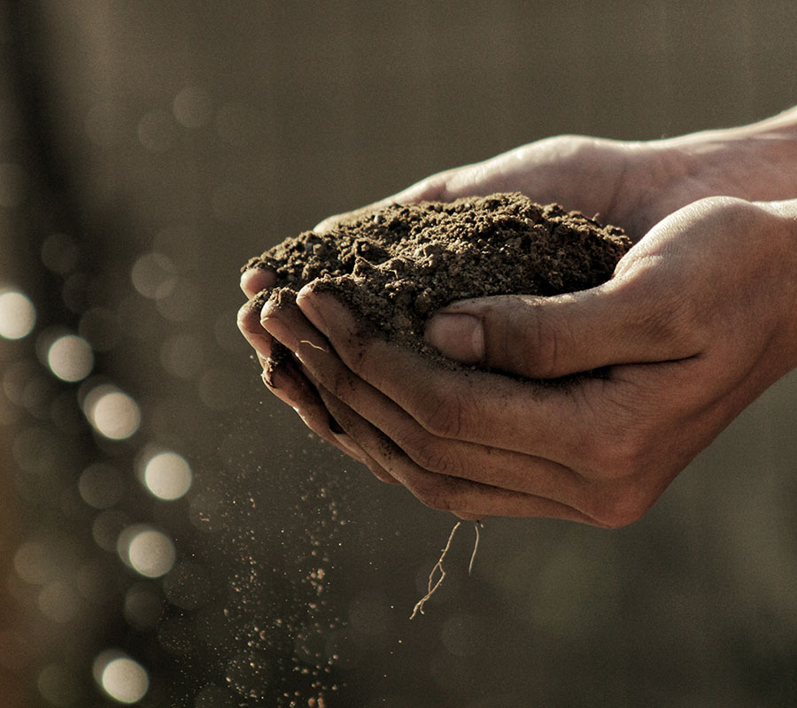 nbcs-agriculture-img-01